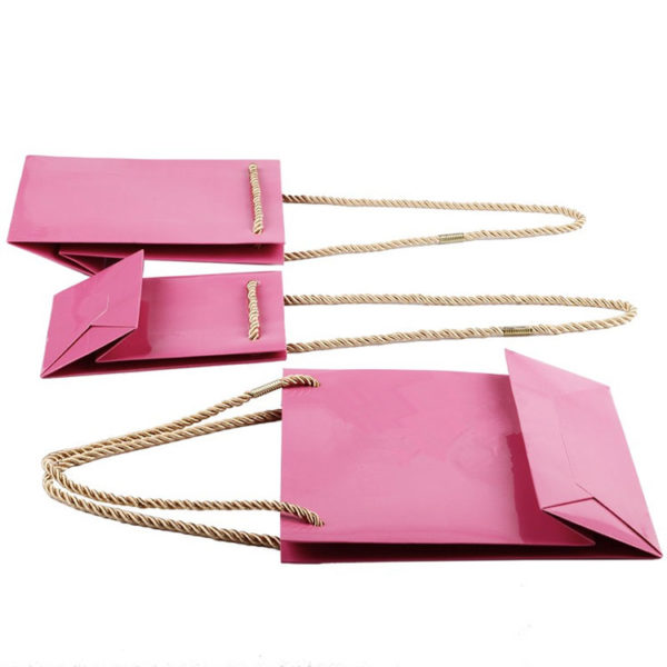 Jewelry Packaging Paper Gift Bags with Rope Handles
